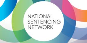 NSN new logo PNG